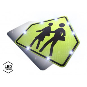 LED School Zone Sign